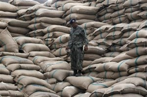 File photo of a defense volunteer standing on sacks of rice at a warehouse in Ayutthaya province