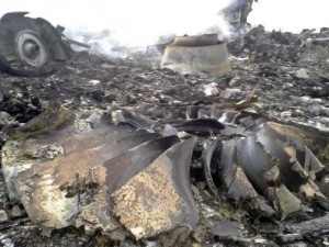 Site of a Malaysia Airlines Boeing 777 plane crash is seen at the settlement of Grabovo in the Donetsk region