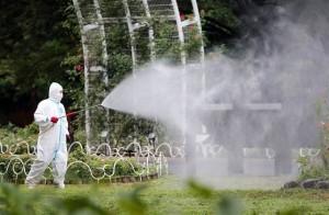 140902-japan-dengue-fever-630a_bfaccd2768667a36f7d9dc047ffc24c0.nbcnews-ux-640-440