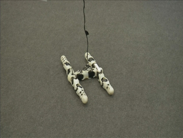 31.3D printed robots adapt themselves to their surroundings