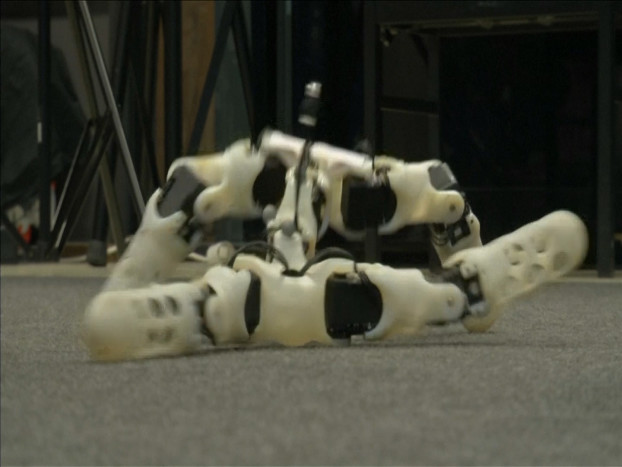 32.3D printed robots adapt themselves to their surroundings