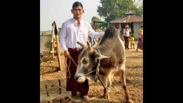 Aung La Nsang Shooting Myanmar Cowboy 1