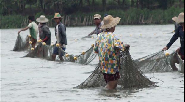 fishery3